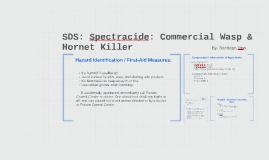 Spectracide: Wasp & Hornet Killer