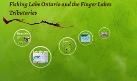 Fishing Lake Ontario and the Finger Lakes Tributaries