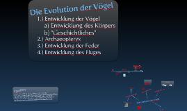 Evolution der Vögel