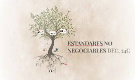 ESTANDARES NO NEGOCIABLES