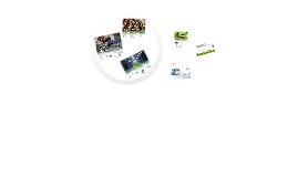 Green IT k:a Gemeinde Baden