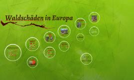 Waldschäden in Europa