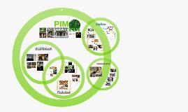Copy of PIM