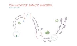Copy of evaluación de impacto ambiental