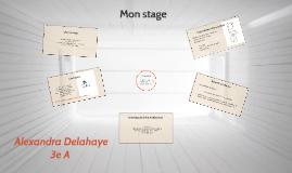 Oral de stage d'Alexandra Delahaye.