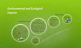 Copy of Environmental Impacts