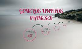 GEMELOS UNIDOS