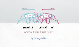 Animal Farm Final Exam