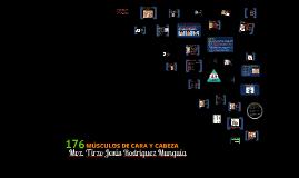 Copy of MUSCULOS DE CARA Y CABEZA