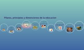 Principios, pilares y deciones de la educaion
