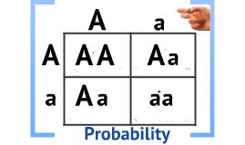 Copy of Biology Chapter 11 Section 2 Probability