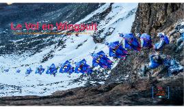 Le Vol en Wingsuit