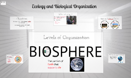 Ecology and Biological Organization