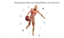 Adaptações musculo-esqueletica ao exercício