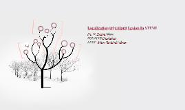 Localization Of Culprit Lesion In STEMI
