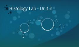 Anatomy Tissue Lab - Unit 2