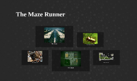 Copy of The Maze Runner
