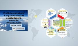 Profilul organizațional Direcția Educație Ungheni
