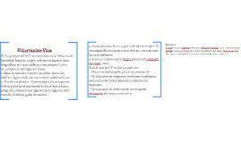 Copy of El Currículum Vitae
