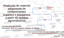 PRODUÇÃO DE MATERIAL ADSORVENTE DE CONTAMINANTES ORGÂNICO E
