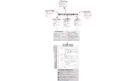 Copy of Egzamin gimnazjalny 2013