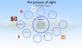 Copy of the process of sight