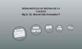 HERRAMIENTAS DE MEJORA DE LA CALIDAD