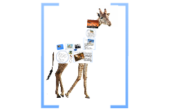 Copy of Diet and Digestion - Giraffe