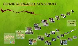 LABE ETA SUKALDE SOLARRAK