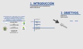 Introducción PDA Nariño