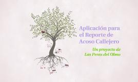 Copy of Aplicacion para el Reporte de Acoso Callejero