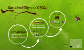 Sustainability and GMOs