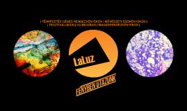 A LaLuz rövid bemutatkozója