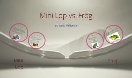 Mini-Lop vs Frog Anatomy