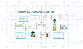 "Teisseire ""LE TRANSPORTABLE"" Bio"