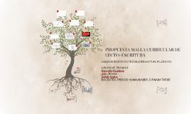Copy of PROPUESTA MALLA CURRICULAR DE LECTO-ESCRITURA