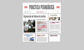 PRACTICA PEDAGÓGICA