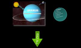 Strouse(Uranus)E