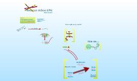 Árbol de Problemas de Rotaract LVC