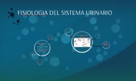 Copy of FISIOLOGIA DEL SISTEMA URINARIO