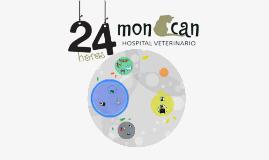 moncan: hopital vétérinaire