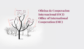 Oficina de Cooperacion Internacional (OCI)