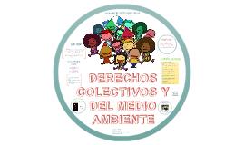 Derechos Colectivos y del Medio Ambiente.