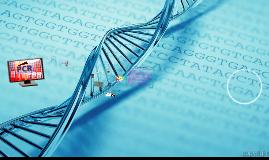PCR ACTUAL