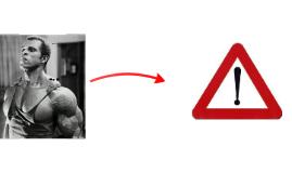 TD1 Musculation.