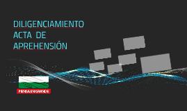DILIGENCIAMIENTO ACTA  DE APREHENSIÓN