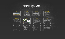 Nelson's Batting Cages