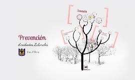 Copy of Prevención Accidentalidad Escolar