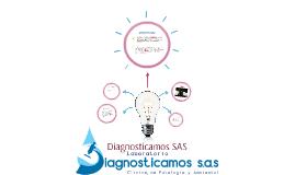 Copy of Diagnosticamos SAS