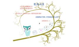 Copy of MEDIDAS CONVENCIONALE